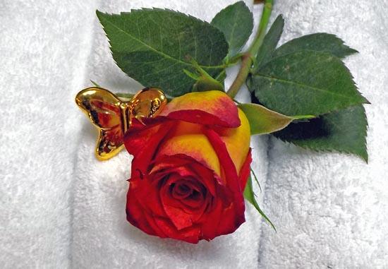 Botox Rose